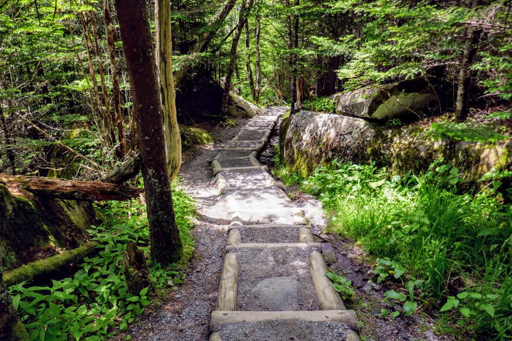 Clingmans Dome Hike