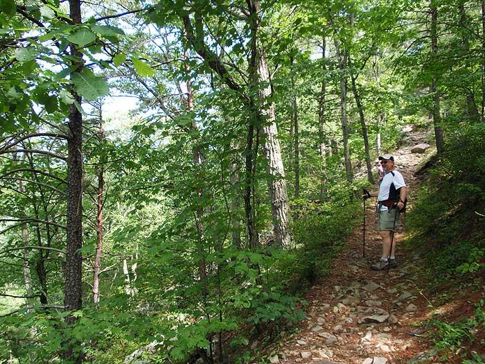 Oak Knob Hike