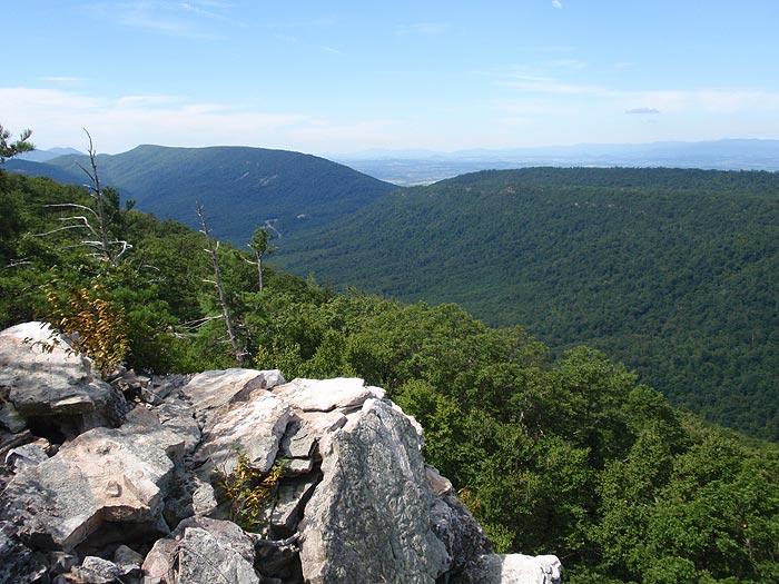 Can Dogs Hike Old Rag