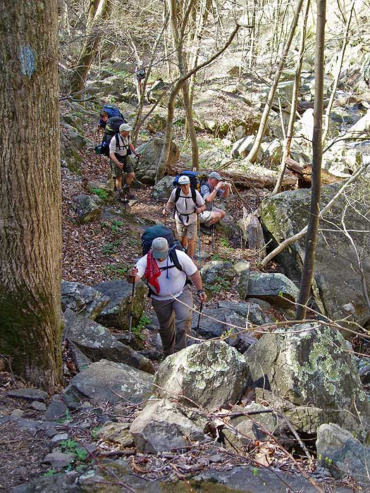 Hiker Reviews for the Three Ridges Hike