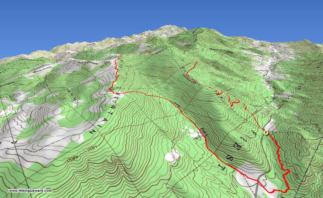 Mt Rogers/Elk Ridge Hike