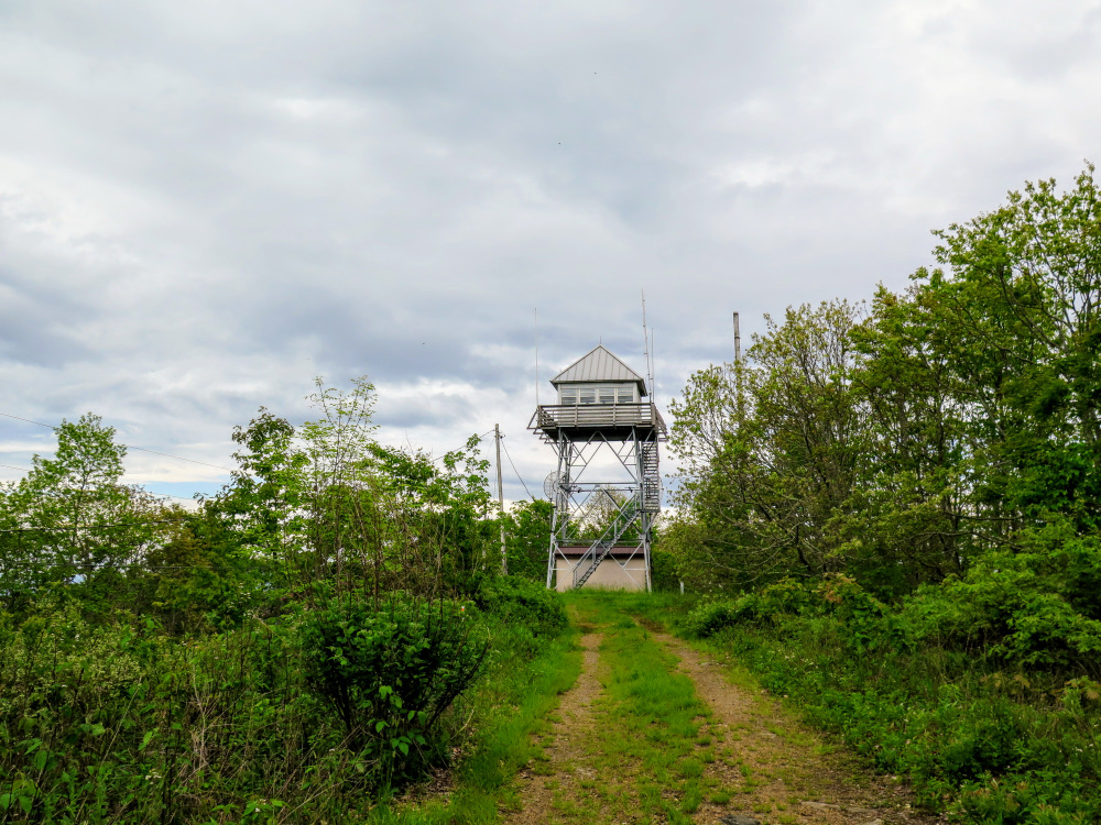 The Tower Was Built In 1933 And Remains In Good Condition, But The Top Cab  Is Normally Locked. The Trees Are Somewhat Cleared Around The Tower, ...