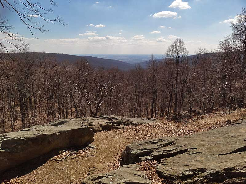 Catoctin Mountain Park Hike