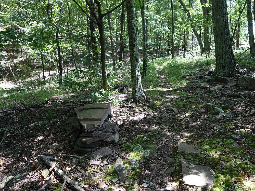 We Cannot Continue To Overlook High >> High Rock Shockeys Knob Hike