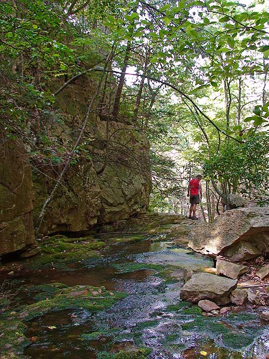 Riprap hollow hike riprap trail will pass through a small gorge and over a 20ft waterfall solutioingenieria Images