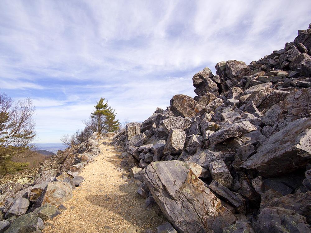 Trayfoot Mountain Paine Run Hike